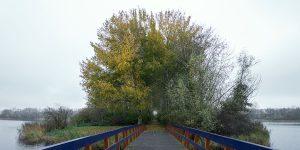 Natuurpark Lelystad bezoeken