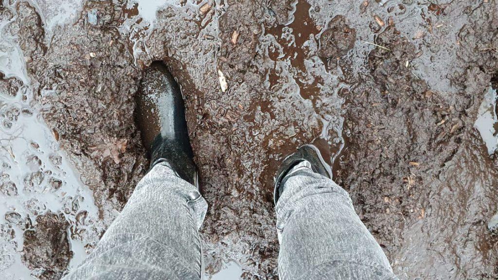 Wandelen door de modder