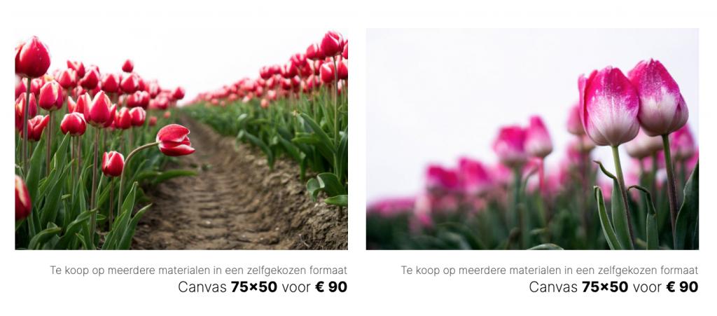 Tulpen poster bestellen